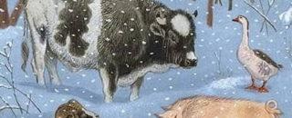 Детская сказка Зимовье зверей читать онлайн