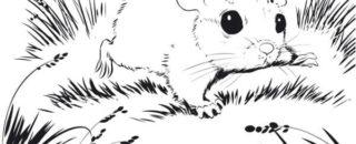 Сказка Белый мышонок читать онлайн