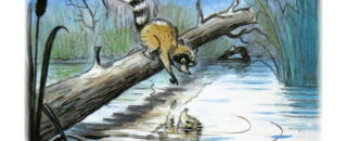 Сказка Крошка енот и тот, кто сидит в пруду слушать и читать онлайн
