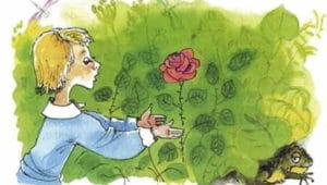 Слушать аудиосказку О жабе и розе