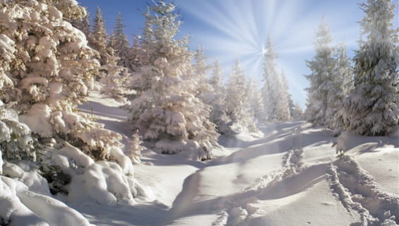Загадки о зиме