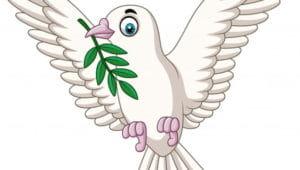 Загадки про голубя