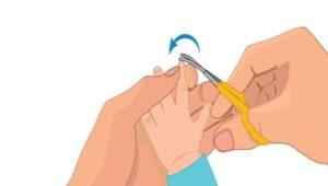 Подстригаем ногти с потешками: большая подборка стишков-потешек для самых маленьких