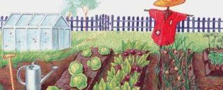 Детские потешки про сад и огород